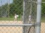 2nd Annual Baseball Tournament