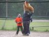 Baseball-Web110