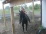 Denton Horseback Riding